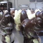 Chocolade Paaskippen groot